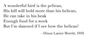 pelican poem