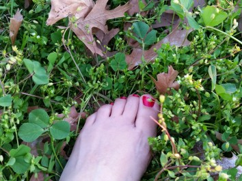 feet in clover